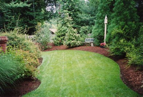 how to correctly install mulch the planting tree the
