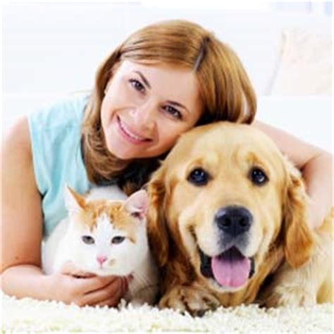 how much does it cost to microchip a where to get microchipped and how much does it cost