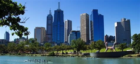 Melbourne Business School Mba Requirements by Trans International Moving And Shipping Removalist Sydney
