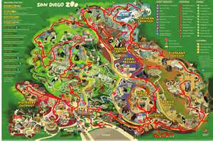 San Diego Zoo Map by San Diego Zoo 10 Jpg Animal Pictures