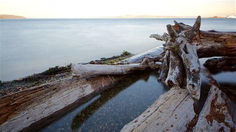 park tacoma point defiance park in tacoma washington expedia