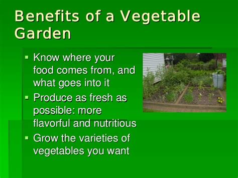 3 vegetables grown in mexico growing vegetables in new mexico new mexico state unviersity