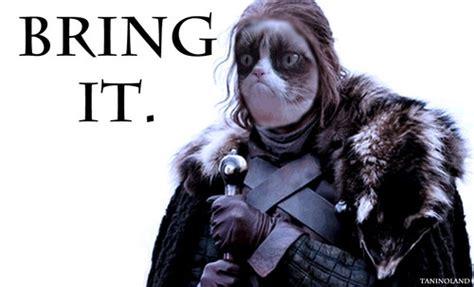 Bring It Meme - grumpy cat bring it meme