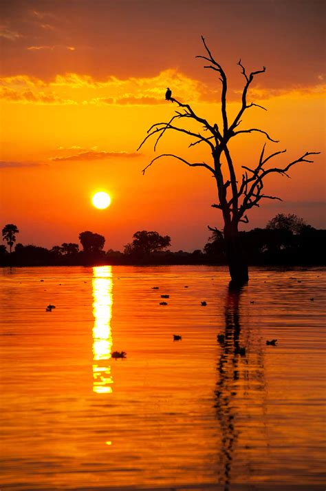 Why s the sun red during sunrise and sunset pitara kids network