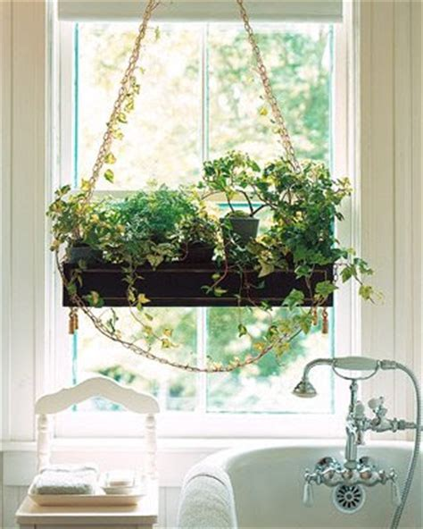 plants for bathroom with no windows jardins maravilhosos vasos na janela