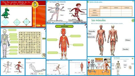 actividades de aprendizaje para ninos material de aprendizaje actividades imprimibles gratis