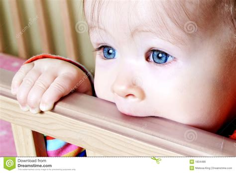 Baby Standing In Crib by Baby In Standing In Crib Royalty Free Stock Image Image