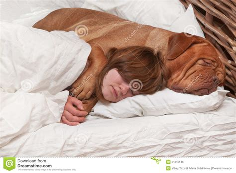 bettdecke lustig and in the bed stock photo image 21815146