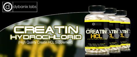 creatine zum abnehmen creatin kur dein fahrplan f 252 r den optimalen muskelaufbau