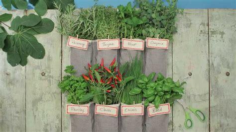 make a vertical garden using a shoe organizer the food