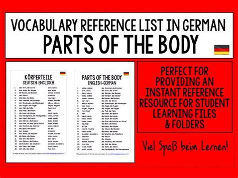german vocabulary reference guide german parts of the body vocabulary reference list by livelylearning teaching resources tes