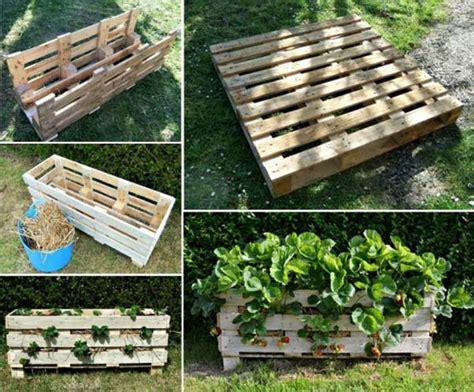 strawberry planter ideas creative diy ideas for growing strawberries on small garden or yard amazing diy interior