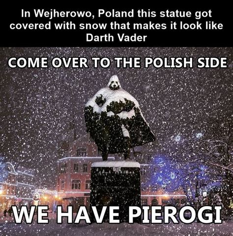Polish Memes - best 25 polish people ideas on pinterest