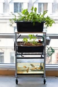 Fish Tank Bed Diy Aquaponics Workshop This Sunday 187 Freestylefarm