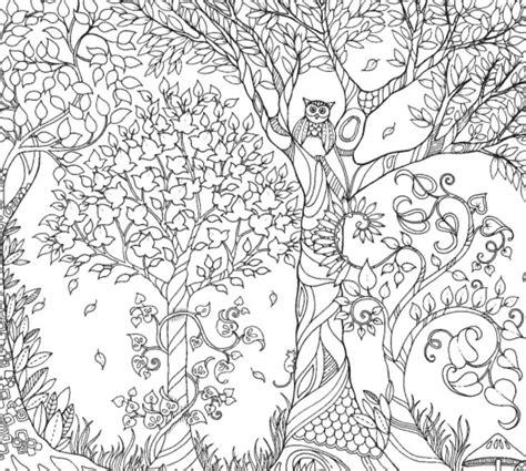 grown up coloring book secret garden inspirational coloring pages from secret garden enchanted