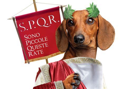 ibl rata bassotta ibl a roma sfilano gli antichi romani per la quot rata