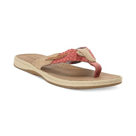 sperry top sider sandals womens sperry top sider womens parrotfish sandals in brown