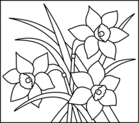 narcissus flower coloring page flowers coloring online