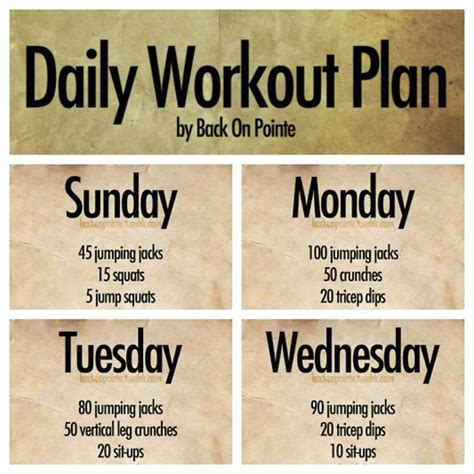 daily workout plan body ab incentive