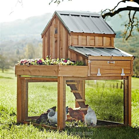 small chicken coop gardens pinterest