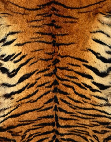 pattern tiger photoshop help trying to achieve changing a texture on someones
