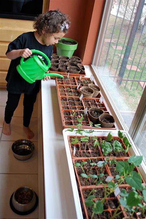 fun  easy indoor gardening  kids home design
