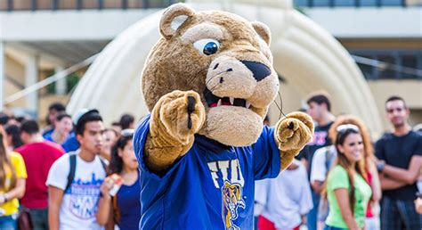 Fiu Mba Ranking 2013 by Agents Fiu Business