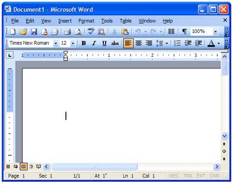 layout of microsoft word 2003 resultado de investigaci 243 n serendipitic
