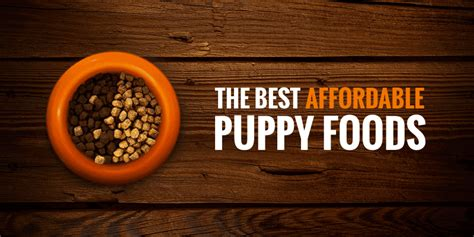cheap puppy food 5 best cheap puppy foods w puppy feeding guide