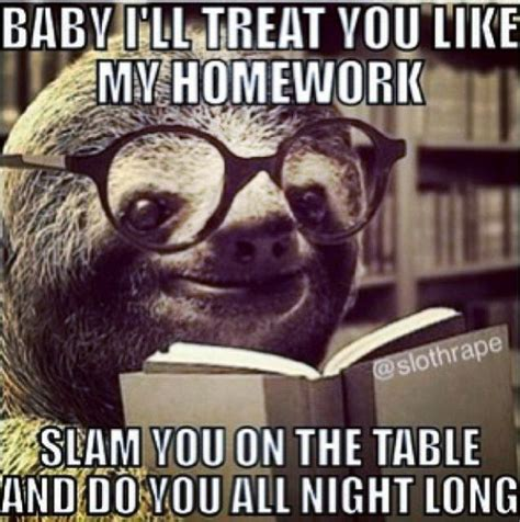 naughty sloth images  pinterest funny stuff