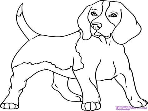 coloring pages beagle puppies simple puppy face coloring how to draw a beagle step by