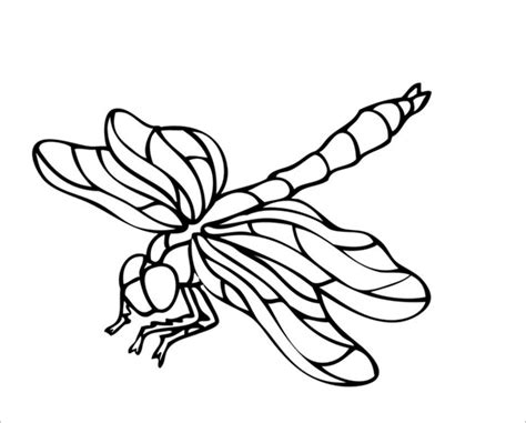 18 Dragonfly Templates Crafts Colouring Pages Free Premium Templates Templates For Pages Free