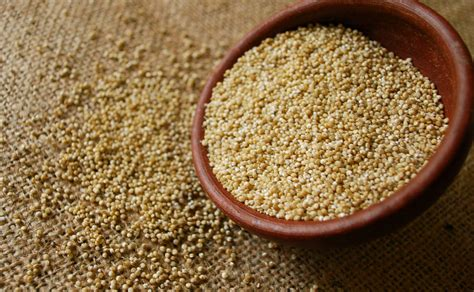 quinoa come cucinarla quinoa cos 232 e come cucinarla risparmio in salute