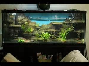 aquarium dekoration beispiele aquarium selber bauen aquarium deko selber bauen