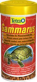 alimentazione perfetta una alimentazione perfetta per le tartarughe d acqua