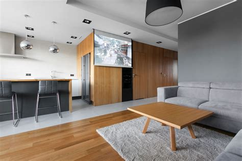 interior spaces open apartment uses wood to define its interior spaces