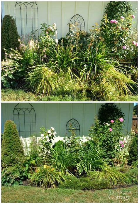 beds and borders 3 easy ways to add curb appeal in late summer