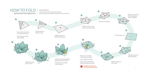 Origami Water Flower - step by step origami flower origami water