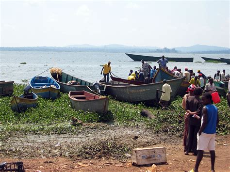 lake boats to fish fishing on lake victoria wikipedia