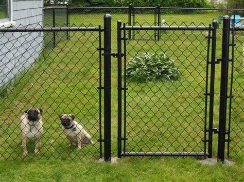 rete da giardino per cani recinti per cani fai da te recinzioni come realizzare