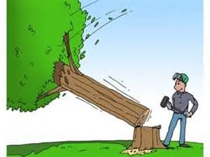 abattre un arbre am 233 nagement de jardin livios