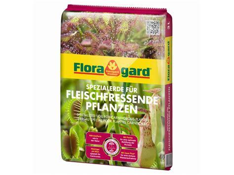 Erde F R Fleischfressende Pflanzen 4318 by Fleischfressende Pflanzen Kaufen Fleischfressende