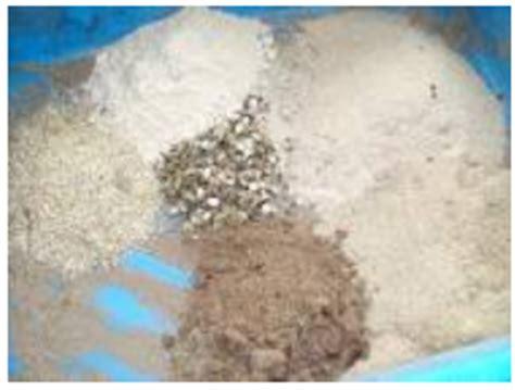 Tepung Tulang Sebagai Pakan Ternak pakan alternatif bebek bachtiar liem center