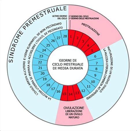 senso di bagnato prima ciclo 9 2b apparato riproduttivo femminile scienze della terra