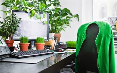 efek dahsyat menaruh tanaman hias  meja kantor menurut