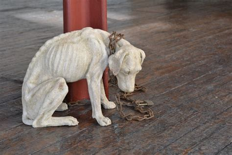 abandoned dogs abandoned dog sculpture tanya russell