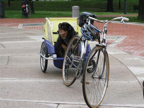 Tshirtt Shirtkaos Bike To Work friday is bike to work day greater city providence