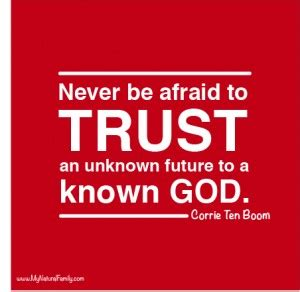 this i trusting your unknown future to a known god books quotes about not trusting god quotesgram
