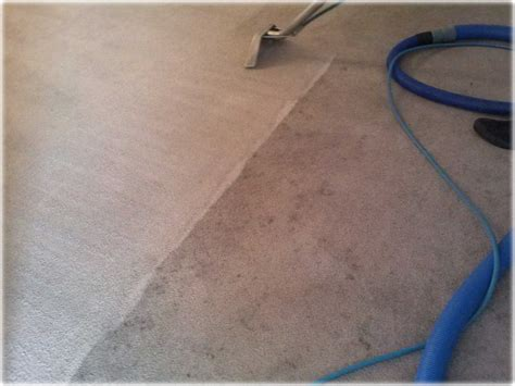 rug cleaning sacramento gold coast flooring gallery carpet cleaning repair tile grout pictures