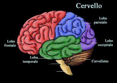 mal di testa tumore cervello tumore al cervello primi sintomi da riconoscere tanta